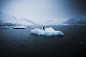 sebastian-copeland__mg_3721-copy