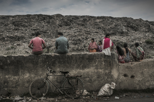 Life in Waste